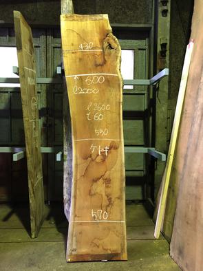 ケヤキ一枚板<br />W2600 D550-600 T60