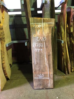 ケヤキ一枚板<br />W1250 D300-360 T120